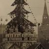 Аватар пользователя Елена Антонова